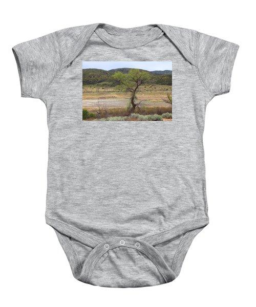 Dried Elizabeth Lake Baby Onesie