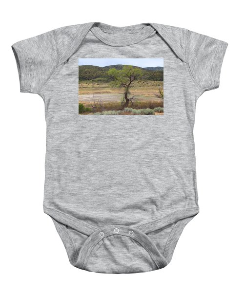 Dried Elizabeth Lake Baby Onesie