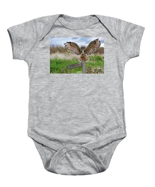Eagle Owl On Signpost Baby Onesie