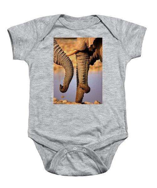 Elephant Trunks Interacting Close-up Baby Onesie