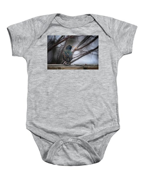 European Starling In Non Breeding Colors Baby Onesie