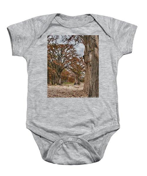 Fall In Texas  Baby Onesie