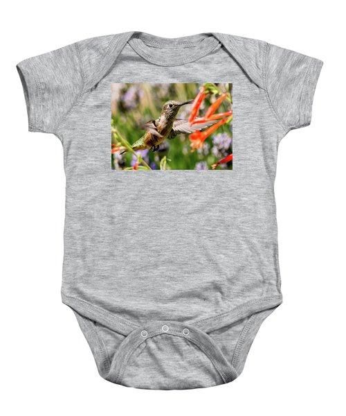 Female Broadtail Humingbird Baby Onesie