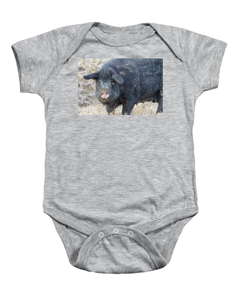 Baby Onesie featuring the photograph Female Hog by James BO Insogna