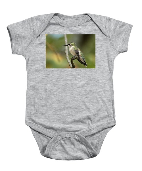 Female Ruby-throated Hummingbird On Branch Baby Onesie