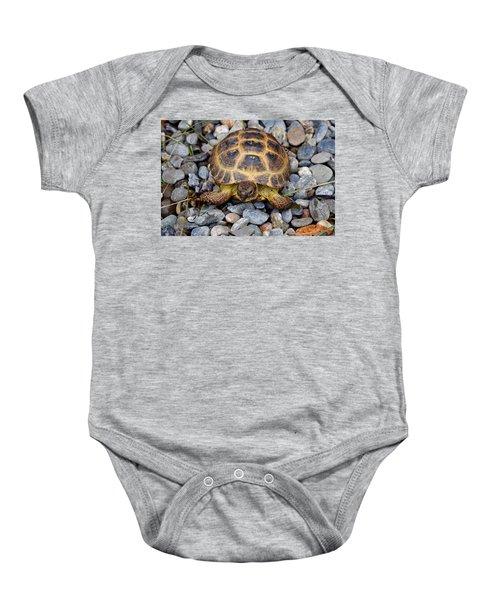 Female Russian Tortoise Baby Onesie