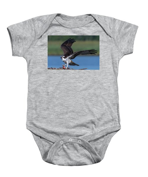 Fish For The Osprey Baby Onesie
