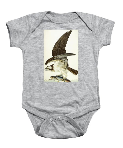 Fish Hawk Baby Onesie by John James Audubon