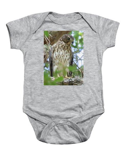 Fledgling Red-shouldered Hawk 2 Baby Onesie