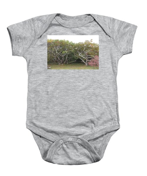 Forest Entry Baby Onesie