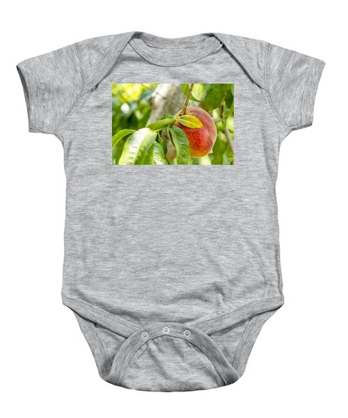 Fresh Peach Hanging In Orchard Baby Onesie