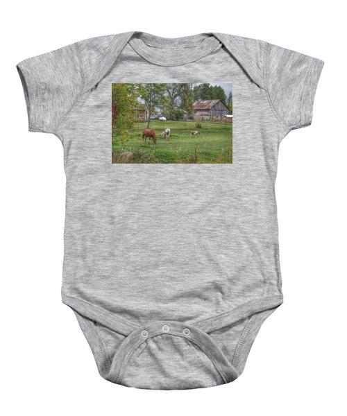 1008 - Front Yard Ponies Baby Onesie