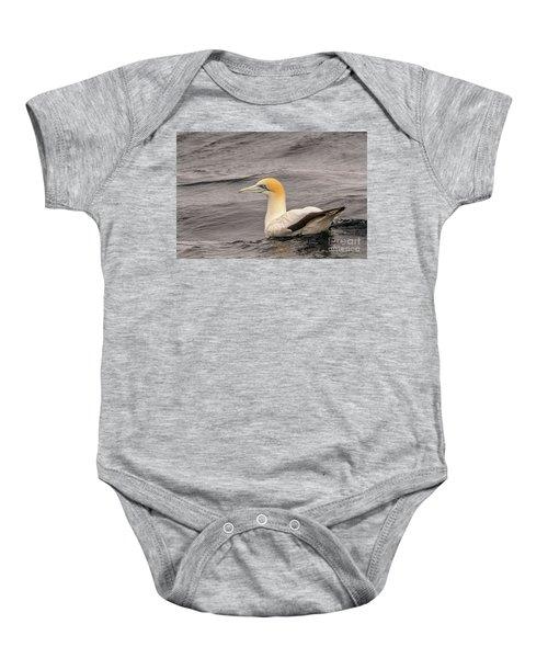 Gannet 5 Baby Onesie
