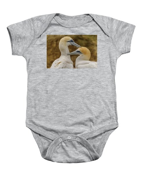 Gannets 4 Baby Onesie by Werner Padarin