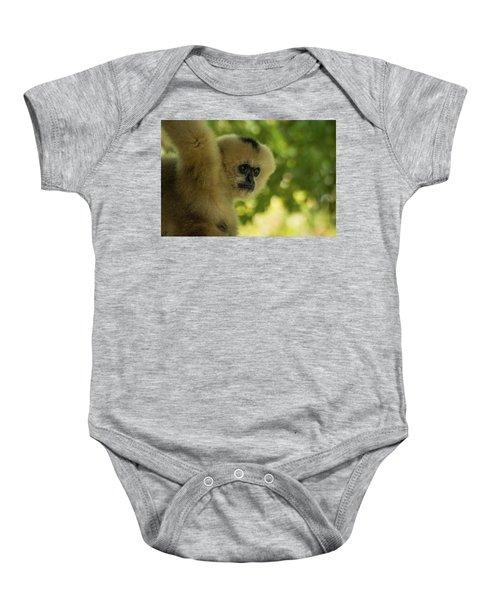 Gibbon Portrait Baby Onesie