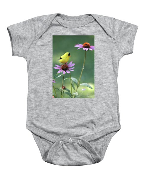 Goldfinch On A Coneflower Baby Onesie