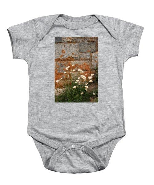 Granite Daisies Baby Onesie