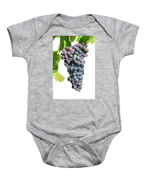 Grapes On Vine Baby Onesie