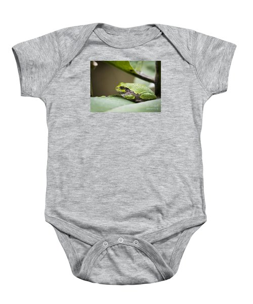 Baby Onesie featuring the photograph Gray Tree Frog - North American Tree Frog by Ricky L Jones