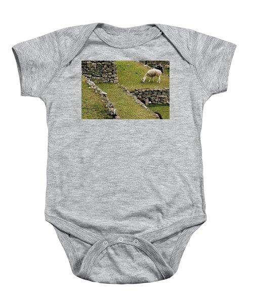 Grazing In Machu Picchu Baby Onesie