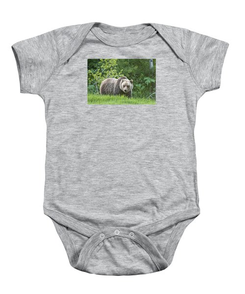 Grizzly Bear Baby Onesie by Gary Lengyel
