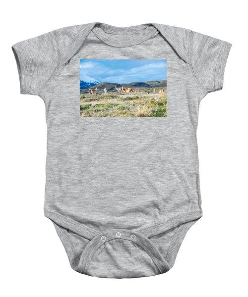 Guanaco In Patagonia Baby Onesie