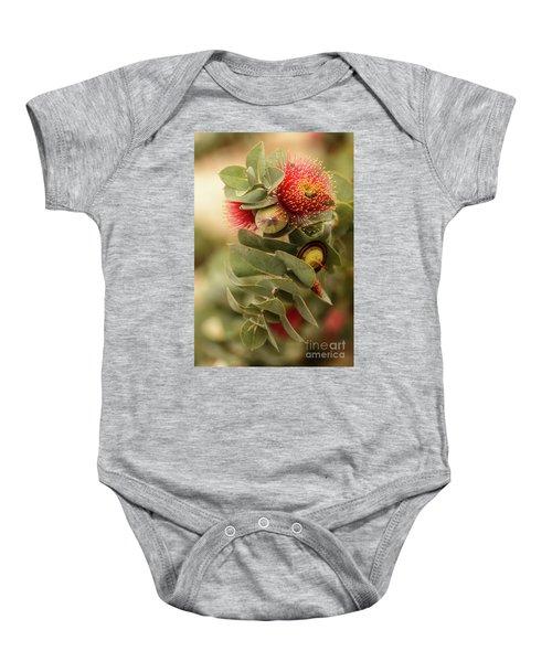 Gum Nuts Baby Onesie