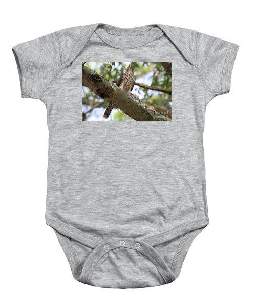 Hawk On A Branch Baby Onesie
