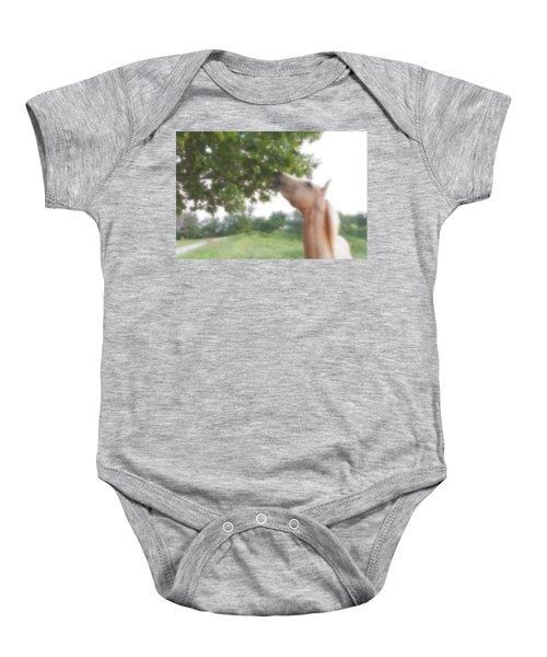 Horse Grazes In A Tree Baby Onesie
