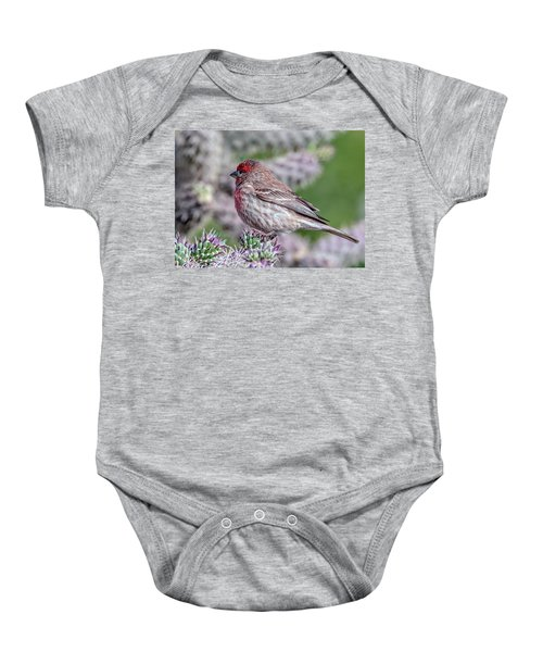 House Finch Male Baby Onesie