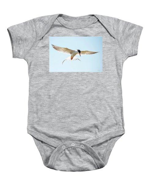 Hovering Tern Baby Onesie