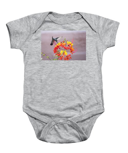 Hummingbird At Work Baby Onesie