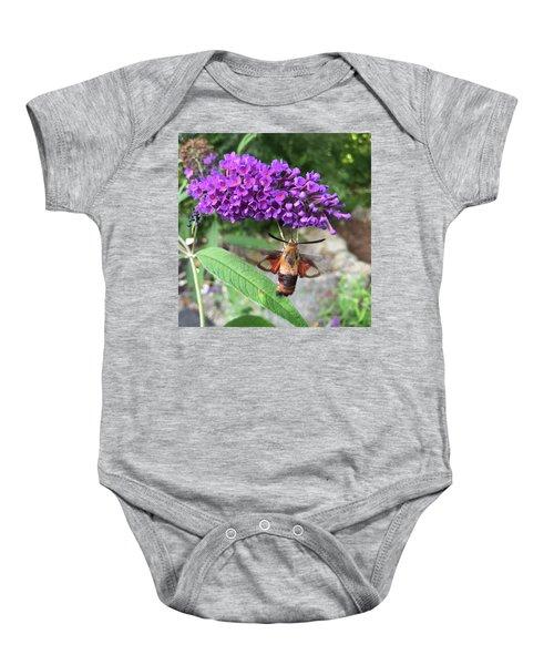 Hummingbird Moth Baby Onesie