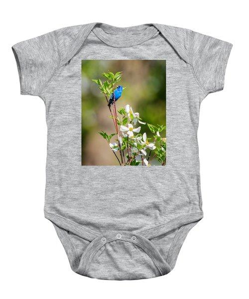 Indigo Bunting In Flowering Dogwood Baby Onesie by Bill Wakeley