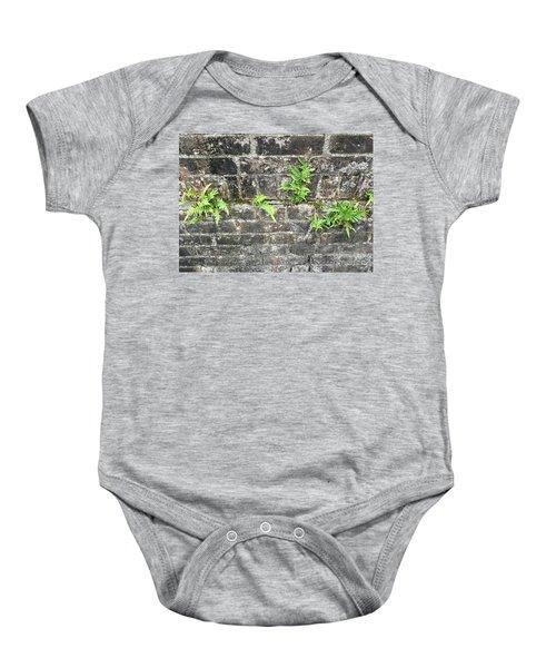 Intrepid Ferns Baby Onesie