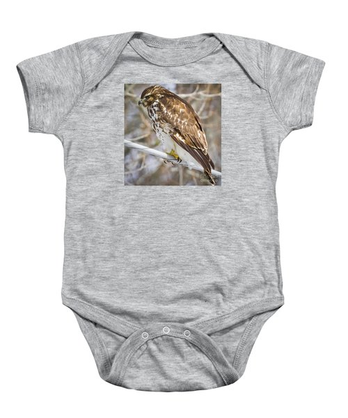 Baby Onesie featuring the photograph Juvenile Red-shouldered Hawk  by Ricky L Jones