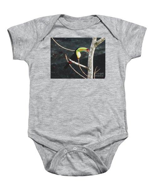 Keel-billed Toucan Baby Onesie
