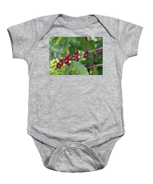 Kona Coffee Cherries Baby Onesie