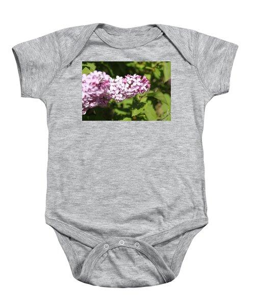 Lilacs 5550 Baby Onesie