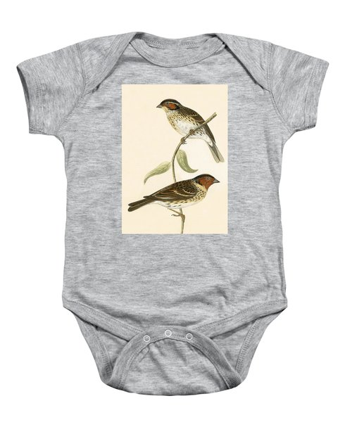 Little Bunting Baby Onesie by English School