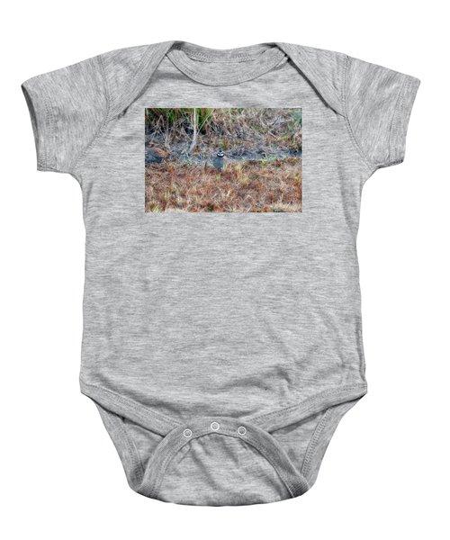 Male Quail In Field Baby Onesie