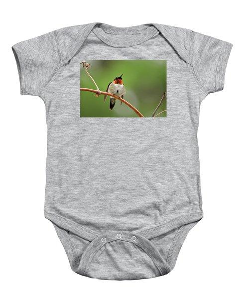 Male Ruby Throated Hummingbird Baby Onesie