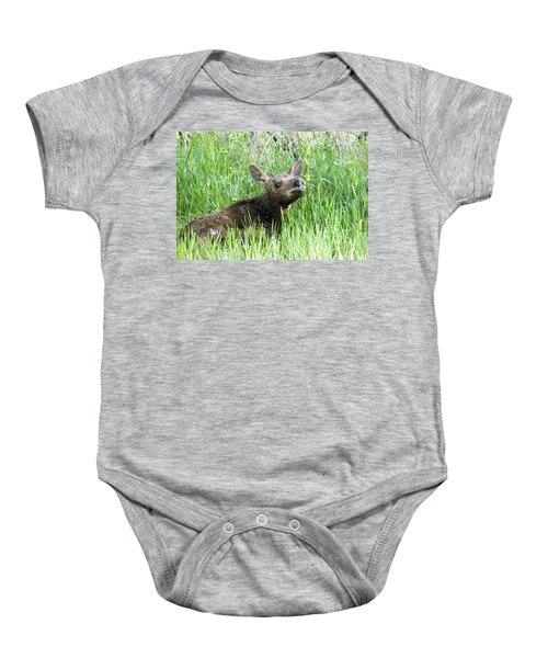 Moose Baby Baby Onesie