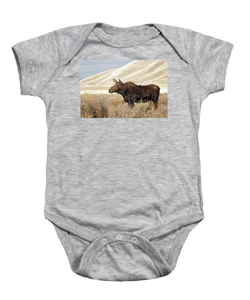 Morning Moose Baby Onesie