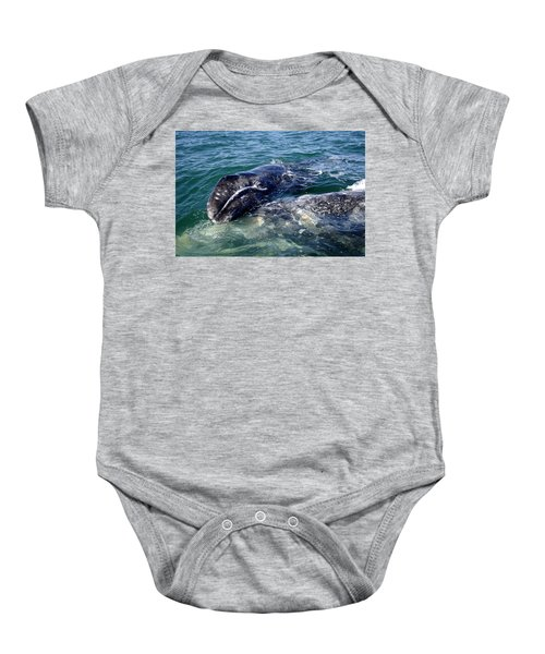 Mother Grey Whale And Baby Calf Baby Onesie