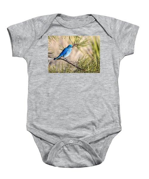 Mountain Bluebird In A Pine Baby Onesie