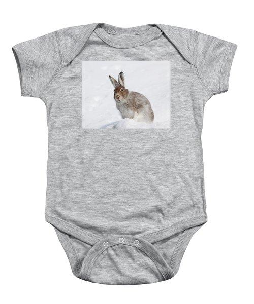 Mountain Hare In Winter Baby Onesie