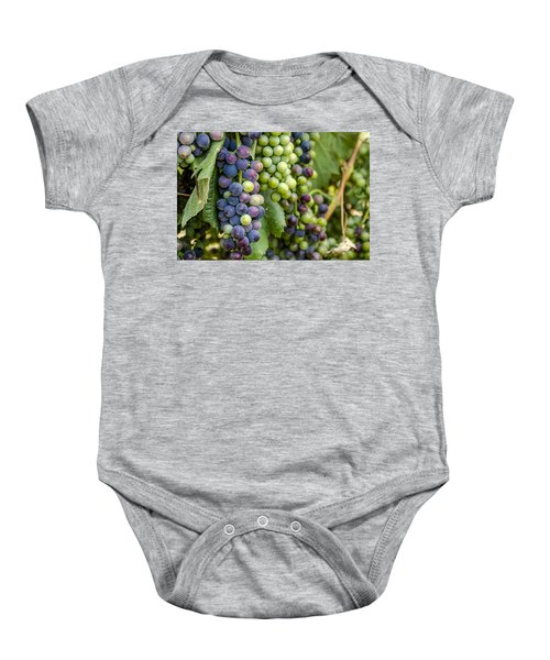 Natures Colors In Wine Grapes Baby Onesie