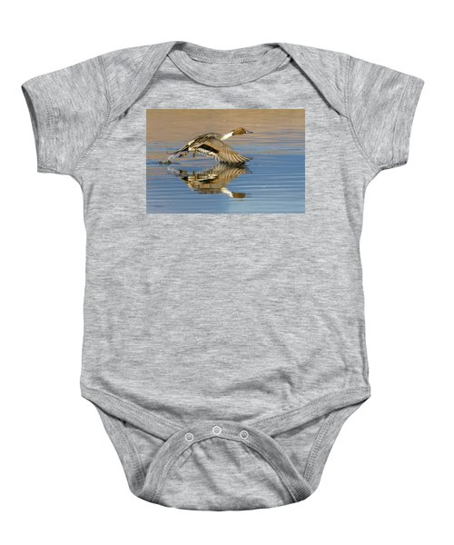 Northern Pintail With Reflection Baby Onesie