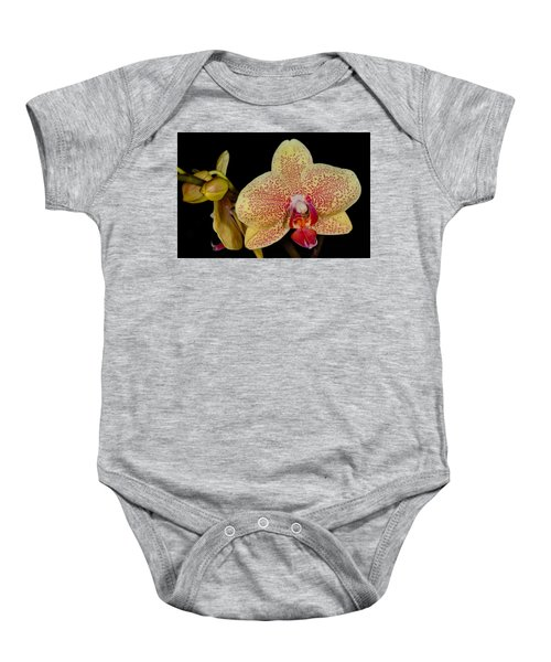 Orchid 377 Baby Onesie